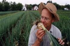agrárkamara, bírság, föld, termőföld