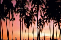 balaton, idegenforgalom, turizmus