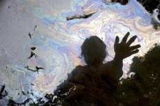film, környezetvédelem, olaj, per
