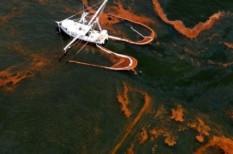 budapest, olaj, természeti katasztrófa