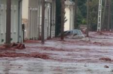 ökológia, segély, természeti katasztrófa