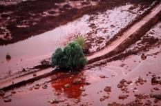 mal, természeti katasztrófa, törvény