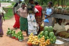 afrika, élelmiszer, segély, szegénység