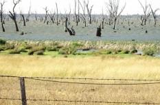 klímaváltozás, segély, természeti katasztrófa