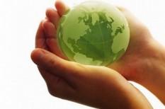 alkotmány, környezetvédelem, parlament