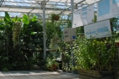 fenntarthatóság, organica, szennyvíz, víz