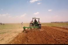 agrár, génkezelt, mezőgazdaság