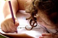 cafeteria, gyerek, kkv, oktatás