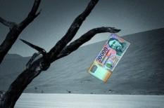 balaton, pénzhelyettesítő