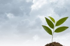 fenntartható fejlődés, fenntartható fejlődési stratégia, fenntarthatósági csúcs