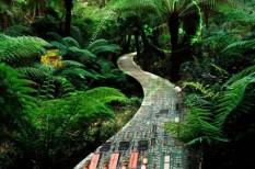 innováció, környezetterhelés, környezetvédelem