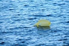 környezetterhelés, környezetvédelem, műanyag