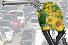 bioetanol, bioüzemanyag, mezőgazdaság