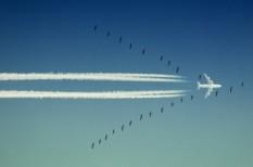 felmérés, repülés, üzletember, üzleti utak