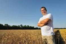 családi gazdaság, földtörvény, mezőgazdaság, termőföld