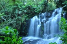 fenntartható termelés, környezettudatos vállalatirányítás, víz