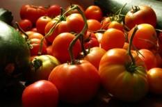 mezőgazdaság, őstermelők, termelői piacok