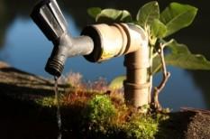 fenntartható fejlődés, fenntartható termelés, fenntarthatóság, ivóvíz, jogszabály módosítás, vízbázis