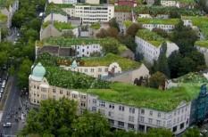 élhető város, fenntartható építészet, zöld