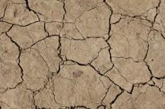 agrárfinanszírozás, agrártámogatás, aszály, mezőgazdaság, mezőgazdasági árak, uniós források
