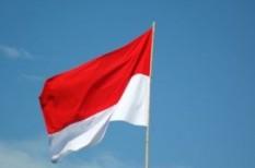 export, import, indonézia
