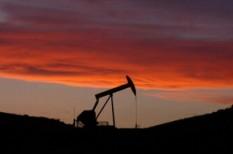 benzinár, energia, fejlődés, zöld