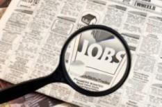 foglalkoztatás, munkahely