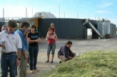 bio, energia, mezőgazdaság