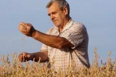 fao, felmelegedés, klímaváltozás, mezőgazdaság