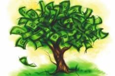 elismerés, környezetvédelem, követ, megtakarítás