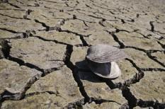 globális felmelegedés, nemzetközi energiaügynökség