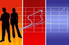 álláshirdetés, munkaerőpiac, profession