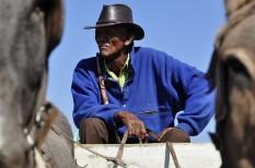 fair trade, fenntartható fejlődés, méltányos kereskedelem