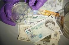 készpénz, mastercard, pénz