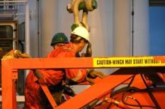csalás, foglalkoztatás, munkaerőpiac