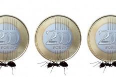 államkötvény, állampapír, magyar államkötvény