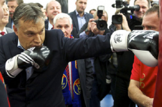 devizahitelek, orbán-kormány, vállalati hitelezés