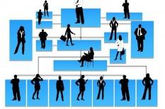 hatékony cégvezetés, hatékonyságnövelés, munkaszervezés