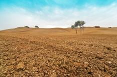 bioszféra, fenntartható fejlődés, klímaváltozás