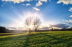 fenntartható fejlődés, környezetvédelem, természeti tőke