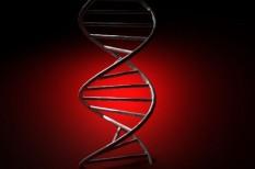 egészség, gén, tudomány