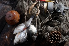 fao, halászat, illegális halászat, környezetvédelem, környezetvédelem uniós szabályozás, túlhalászat, vízlábnyom
