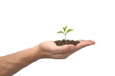 agrár, amazon, élelmiszer, google, jeff bezos, mezőgazdaság, növénytermesztés, szilícium-völgy, vertikális farm