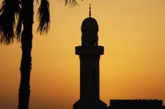 arab, benzin, közel-kelet, megújuló energia, olaj, zöld energia