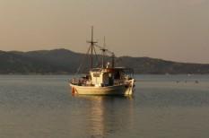 biodiverzitás, eu, hal, halászat, tenger, törvény
