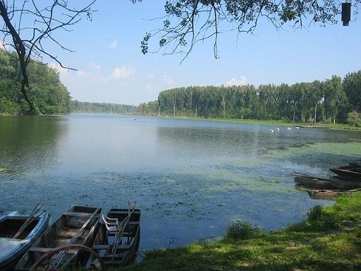 Szükségünk van a szabályozatlan folyókra - Kép: Pixabay
