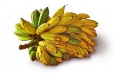 biogazdálkodás, biotermék, egészséges táplálkozás, fairtrade, tudatos fogyasztó, tudatos vásárlás