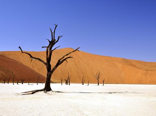 Átalakítja a klímánkat a felmelegedés - Kép: Pixabay