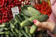 fagykár, mezőgazdaság, szélsőséges időjárás, terménykiesés, zöldségtermesztés