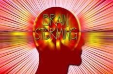 agyelszívás, munkaerőpiac, tehetséggondozás